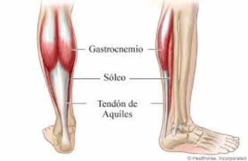 Para establecer el diagnóstico del Tendón de Aquiles, exploramos el rango de movimiento en el tobillo y realizaremos el test de Silverskiold para valorar si el acortamiento es debido a los gemelos, al sóleo o al complejo gastroc-sóleo.